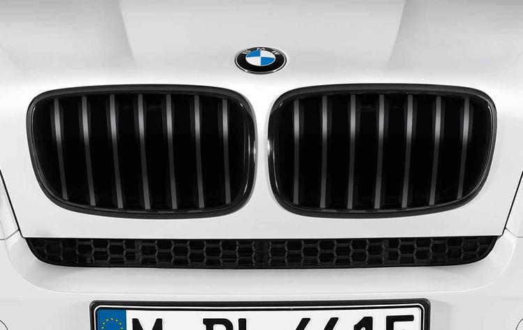 Wonderbaar Grilles de calandre pour BMW X5 E70 et BMW X6 E71 dans Accessoires TZ-01